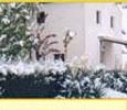 Casas Rurales En Murcia. Cortijo Villa Rosa